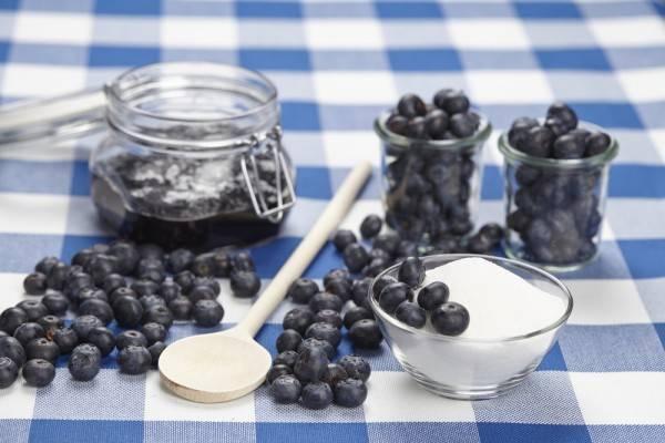 10 лучших рецептов приготовления на зиму черники с сахаром без варки