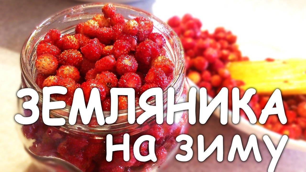 Как сохранить клубнику свежей в холодильнике несколько дней и запасти ее на зиму
