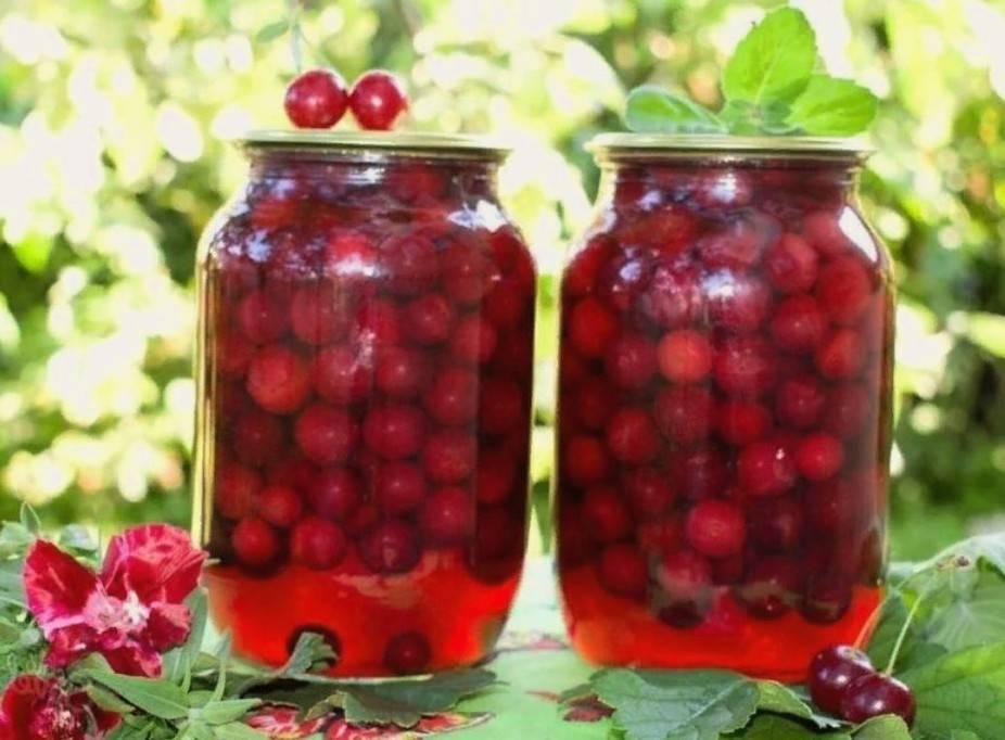 Компот из вишни на зиму: 7 рецептов вишневого компота на 3 литровую банку