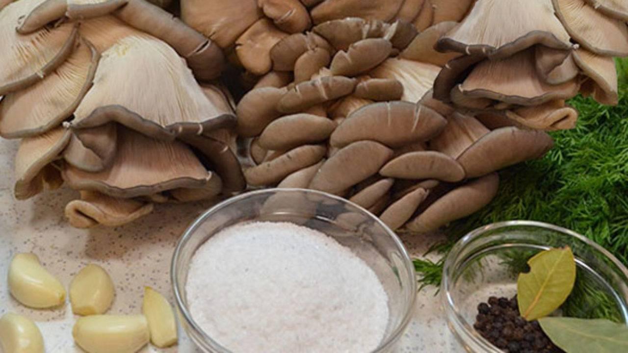 Несколько популярных рецептов приготовления грибной икры