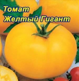 Описание, характеристика и особенности выращивания томата розовый гигант