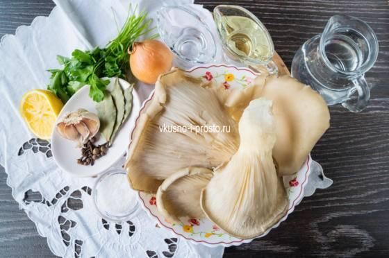 Засолка, консервирование грибов вешенок в домашних условиях