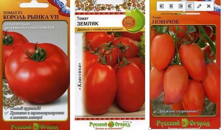 Какие сорта низкорослых помидор лучше выбрать для открытого грунта