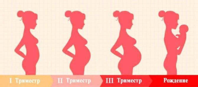 Можно ли есть петрушку при беременности