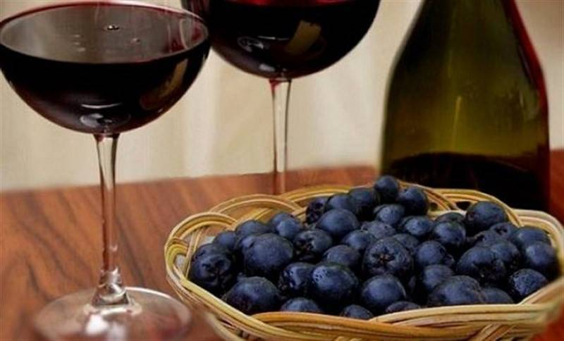 5 лучших пошаговых рецептов приготовления вина из красной рябины в домашних условиях и 12 полезных свойств ягоды