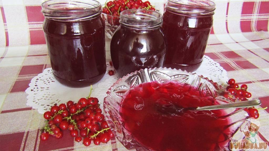 Заготовка на зиму красной смородины рецепты