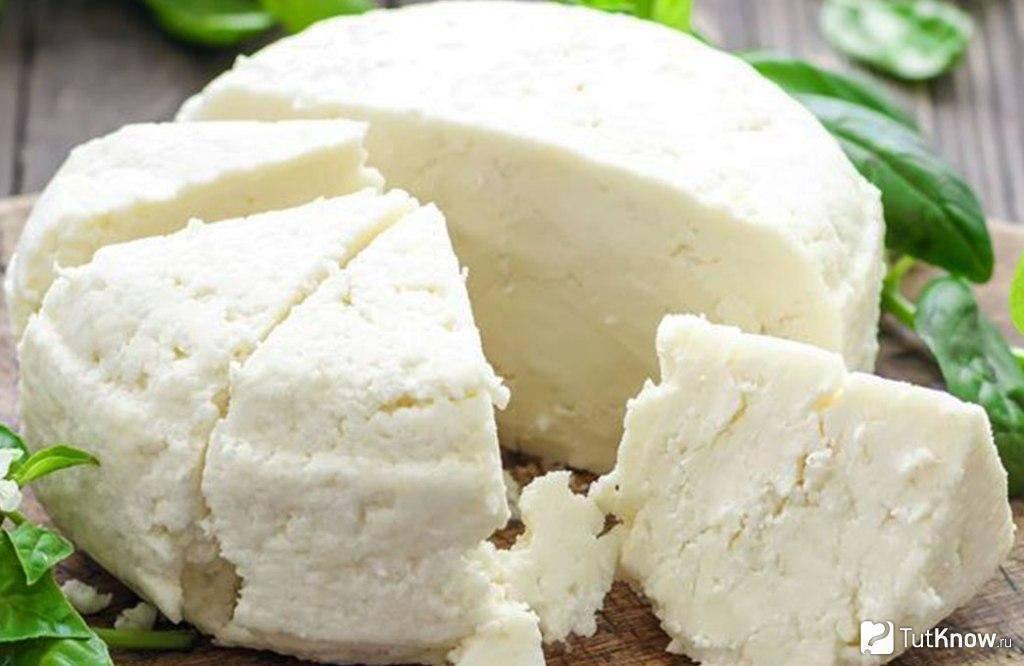 Что такое молочные продукты, какие есть разновидности? польза и вред, рекомендации по хранению