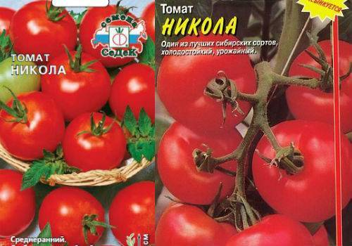 Характеристика и описание томата «никола»