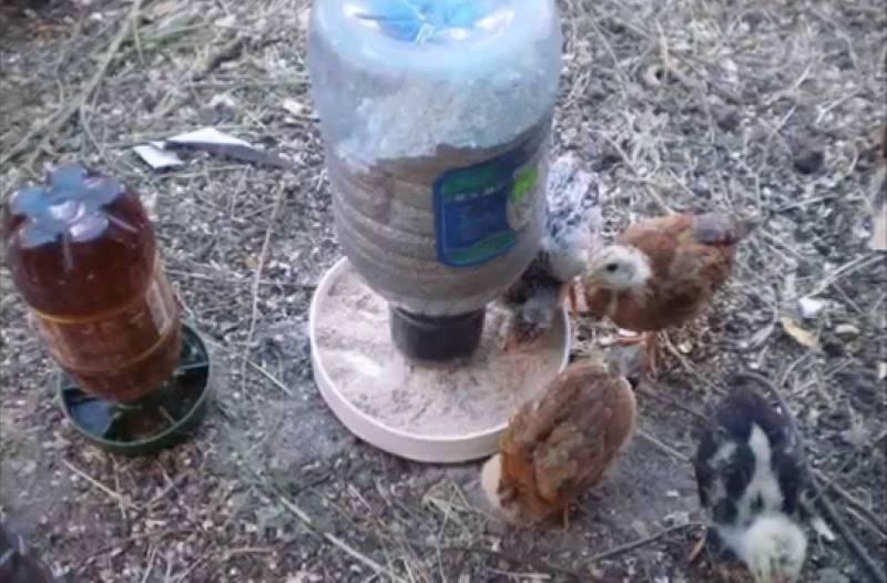 Кормушка для цыплят своими руками