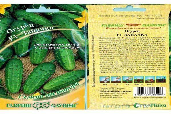 Огурец зозуля f1: описание высокоурожайного сорта, особенности посадки, выращивания и ухода, отзывы дачников