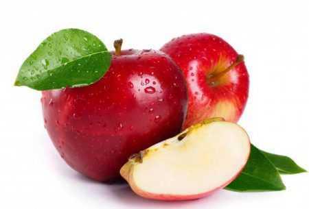 Зимняя яблоня беркутовское