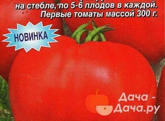 Позднеспелый томат бычье сердце: как вырастить лучший салатный сорт