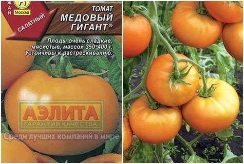 Характеристика и описание сорта томата Медовый гигант, его урожайность
