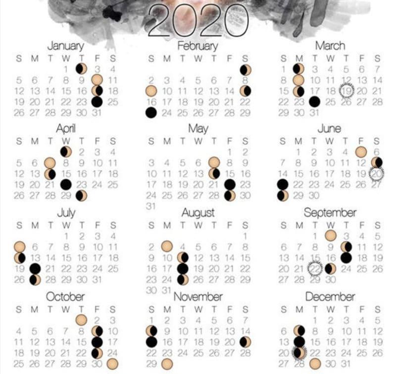 Сроки посадки рассады горького перца в 2020 году по лунному календарю