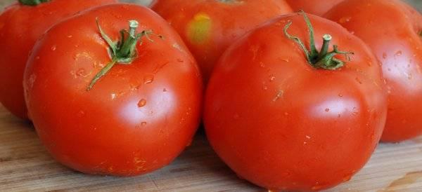 Томат оля: описание сорта, характеристика, отзывы об урожайности, фото – все о помидорках