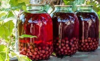 Компот из крыжовника на зиму на 3-х литровую банку – 10 простых и вкусных рецептов