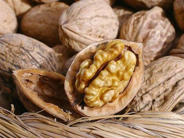 Описание сорта грецкого ореха саратовский идеал. правила выращивания, польза, вред и применение
