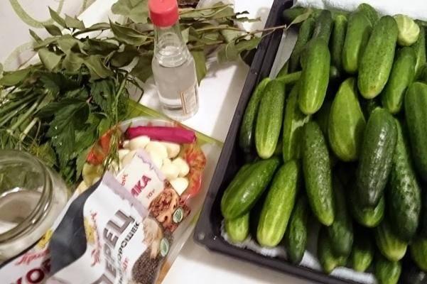 10 супер рецептов маринованных огурцов на зиму