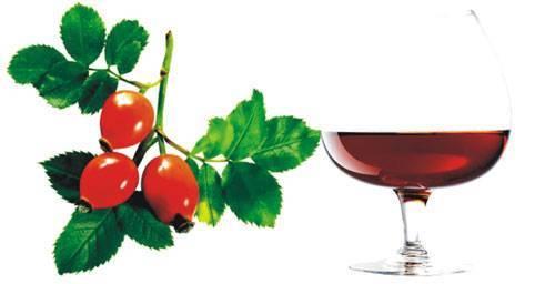 Вино из шиповника — рецепт домашнего приготовления