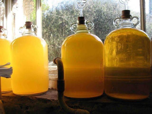 Яблочное вино в домашних условиях простой рецепт с фото пошагово