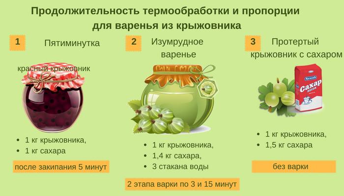 Варенье из крыжовника. самые простые и вкусные способы приготовления