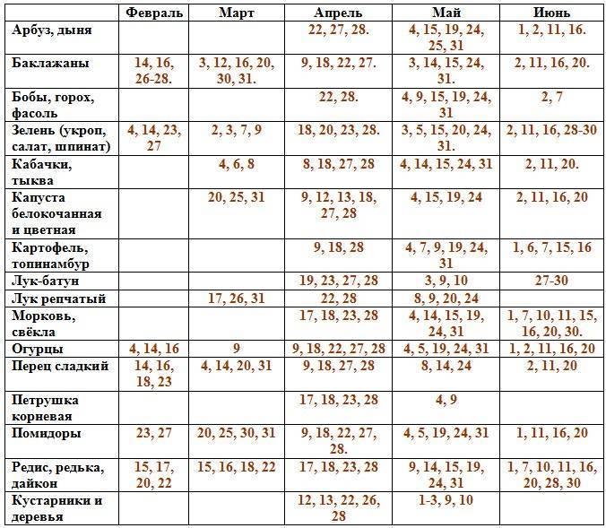 Лунный календарь садоводов и огородников на июнь 2020 года