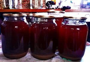 Виноградный сок: лучшие способы приготовления в домашних условиях