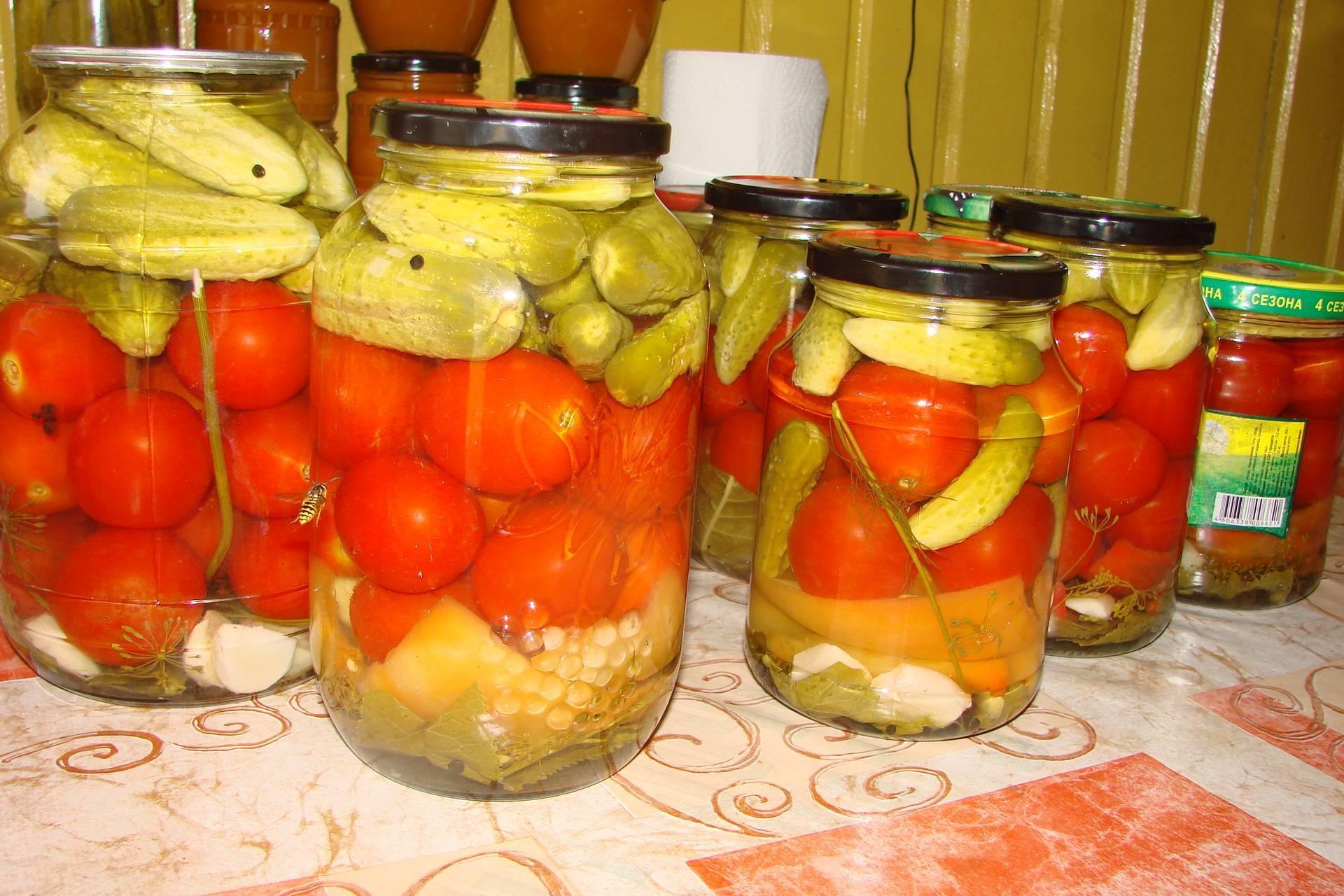 Топ 12 рецептов приготовления маринованных грибов на зиму