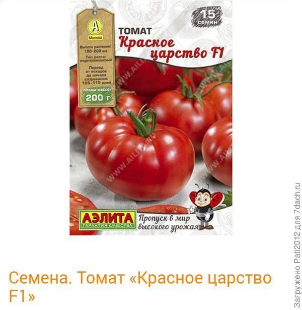 Превосходный сорт с прекрасным внешним видом — томат цуно: отзывы об урожайности, описание помидоров