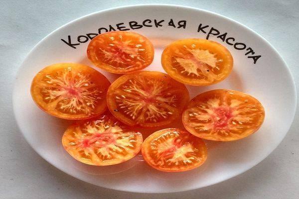 Описание сорта томата Королевская красота, его характеристика и урожайность