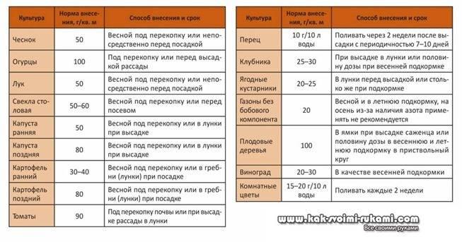 Правила применения удобрения нитрофоска на огороде