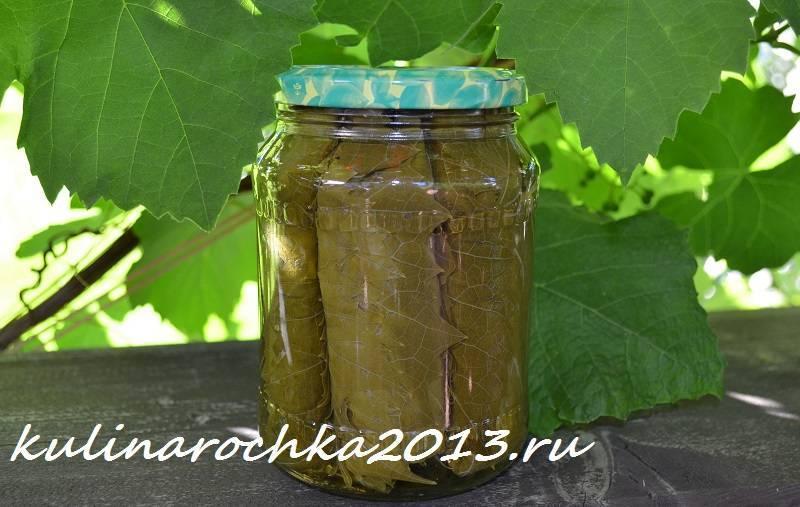 Рецепт долмы из маринованных виноградных листьев. заготовка на зиму