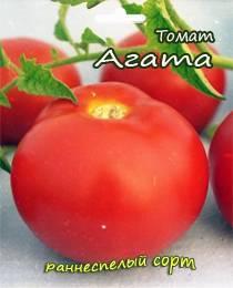 Томат агата: характеристика и описание сорта, отзывы тех, кто сажал