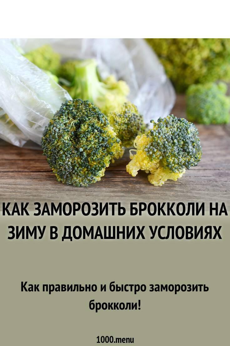 Брокколи на зиму рецепты