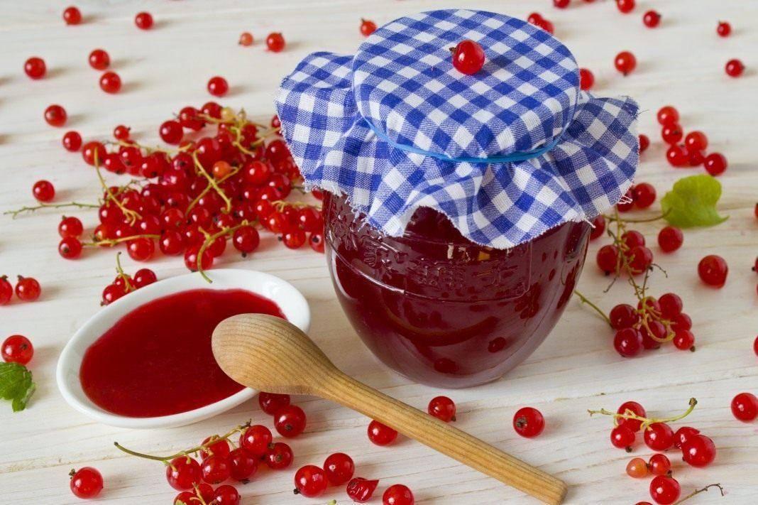 Желе из красной смородины без варки на зиму – 7 простых рецептов