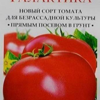 Томат синий: описание и характеристика, сорта синих помидоров