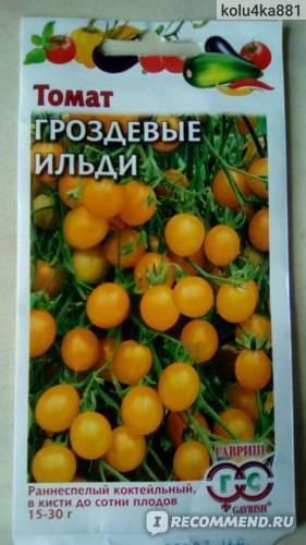 Обильные урожаи и потрясный вкус — томат гроздевые ильди: описание сорта и характерискика