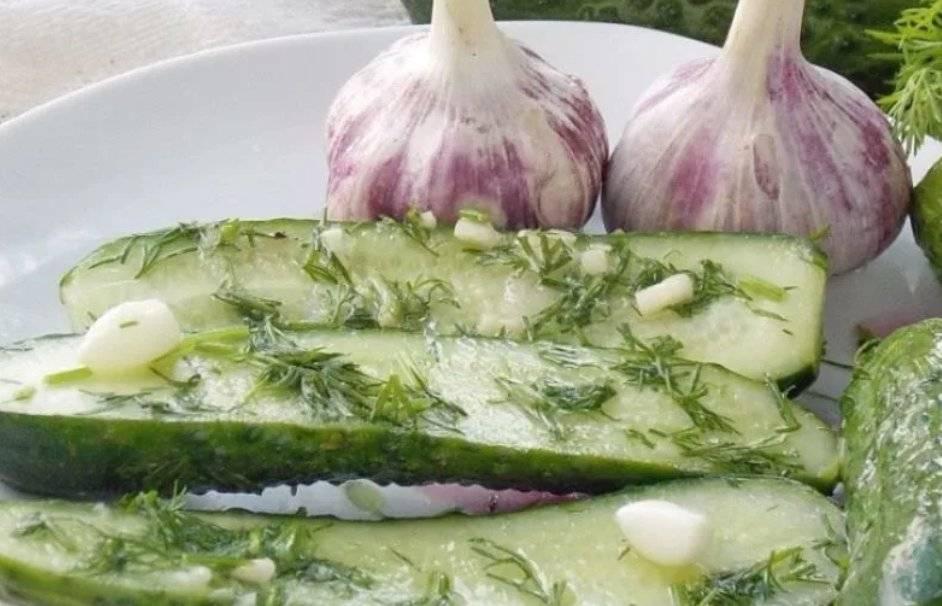 9 рецептов отменных малосольных огурцов