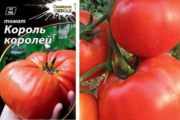Серия томатов «король рынка»: описание и характеристика сортов