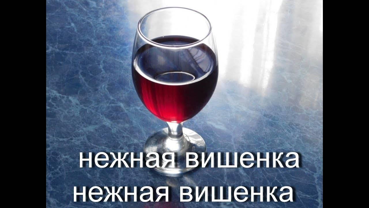 Вино из вишни в домашних условиях. как приготовить домашнее вино из вишни: с косточкой и без, с водкой