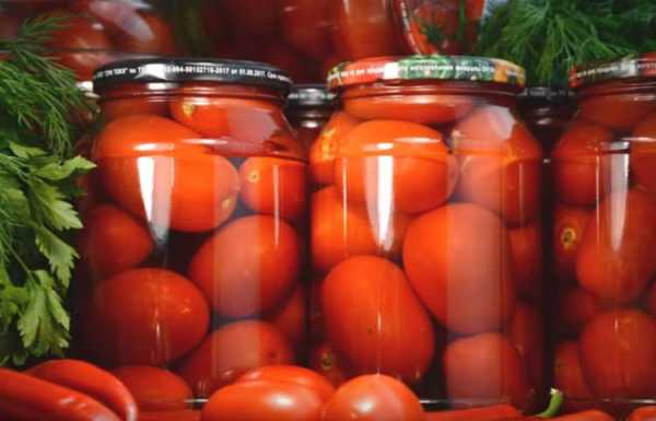 Топ 13 рецептов приготовления на зиму приправы из помидор