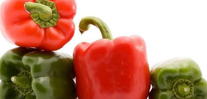 Характеристика и описание перца сорта калифорнийское чудо и его урожайность