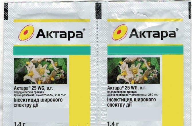 Актара: инструкция по применению для разных растений