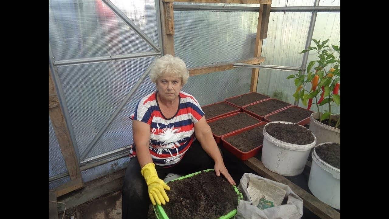 Как подготовить простую почву своими руками для хорошего урожая томатов? необходимый состав грунта
