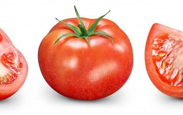 Томат брат 2 f1: характеристика и описание сорта, мнение садоводов с фото