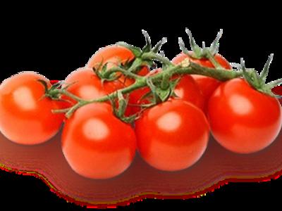Характеристика и описание томата «кмициц»