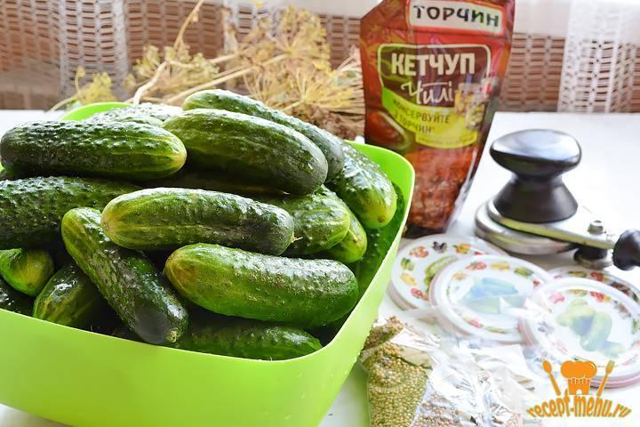 Огурцы с кетчупом чили, махеев и хайнц на зиму в литровых банках: самые вкусные рецепты. бонус: обалденный рецепт — огурцы с чесноком в кетчупе на зиму