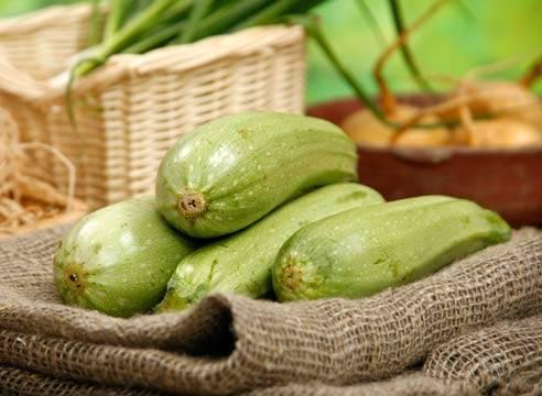 Подборка лучших рецептов консервированных кабачков цукини: готовьте вкусно и удивляйте гостей