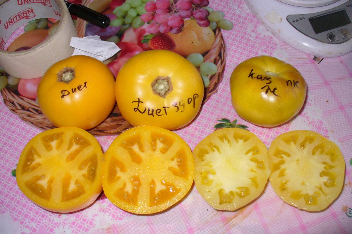 Описание томата Диетический здоровяк, выращивание и урожайность сорта
