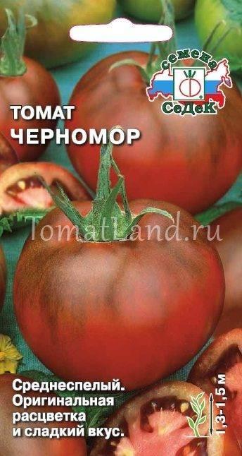 Описание сорта томата черномор, его выращивание и урожайность